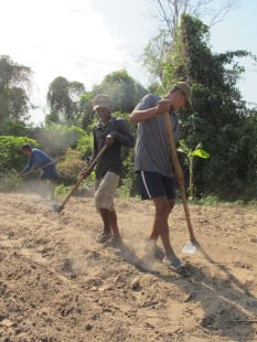 Cambodian farmers dig soil